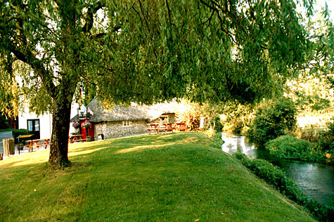 Visit the Smith's Arms at Godmanstone and enjoy your drink sitting on the grass and watching the River Cerne meander past.