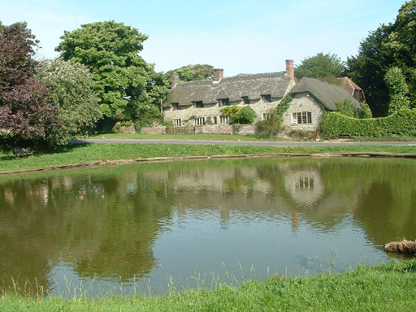 The pond at Ashmore village. Photo by John Smitten http://www.geograph.org.uk/profile/1139