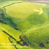 Dorset's Ancient Fields