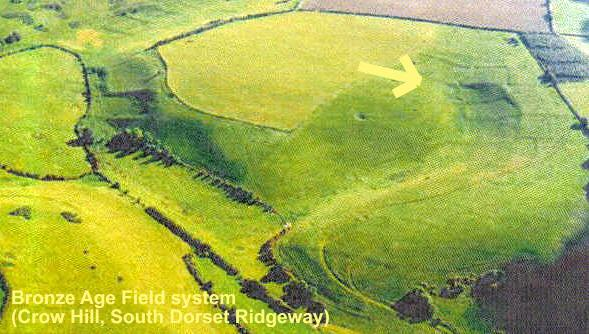 Crow Hill Field System