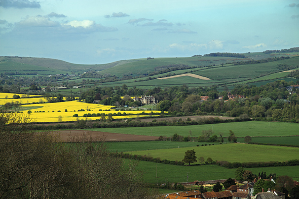 On the descent from Hambledon Hill on its east side, looking towards Iwerne Minster. A section of part of the north side of the village of Iwerne Courtney is visible at bottom right, and in the middle distance, Clayesmore School. Photo by Mike Searle - for more about Mike Searle click on photo.